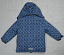 Куртка зимняя для девочки синяя (Quadrifoglio, Польша), фото 7