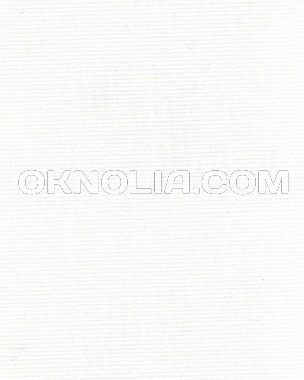 Тканевая ролета Ара 1000 белый, 70*170 см