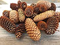 Шишки ели натуральные маленькие размер ок.5 см, 25 шт, 50 грн, фото 1