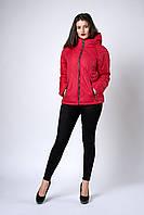 Женская молодежная демисезонная куртка. Код модели К-125-36-18. Цвет красный.