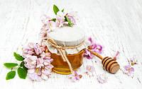 Мед лікувальний