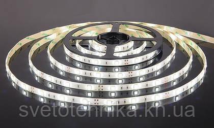 Поступление новой светодиодной ленты по суперцене!
