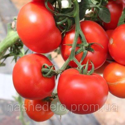 Семена томата Магнетик F1 100 семян Hazera