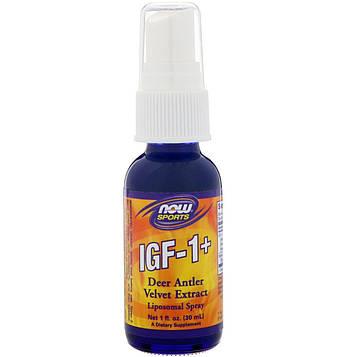 Now Foods, IGF-1+, 1 ж. унц. (30 мл)