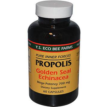 Y.S. Eco Bee Farms, Прополис, гидрастис и эхинацея, 60 капсул