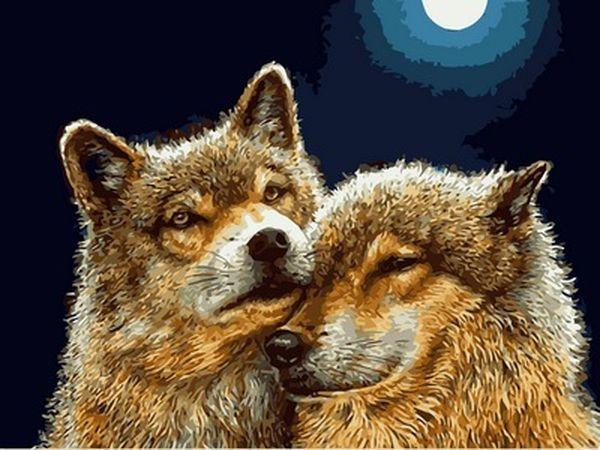 Картины по номерам 30×40 см. Волк и волчица