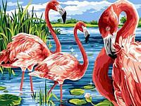 Картины по номерам 30×40 см. Остров фламинго