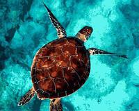 Картины по номерам 40×50 см. Морская черепаха