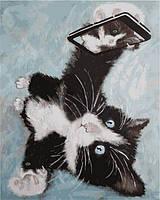 Картины по номерам 40×50 см. Селфи-кот (VP-1012), фото 1