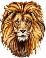 Картины по номерам 40×50 см. Портрет Льва, фото 1