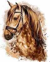 Картины по номерам 40×50 см. Портрет коня Художник Лорри Кайенна, фото 1