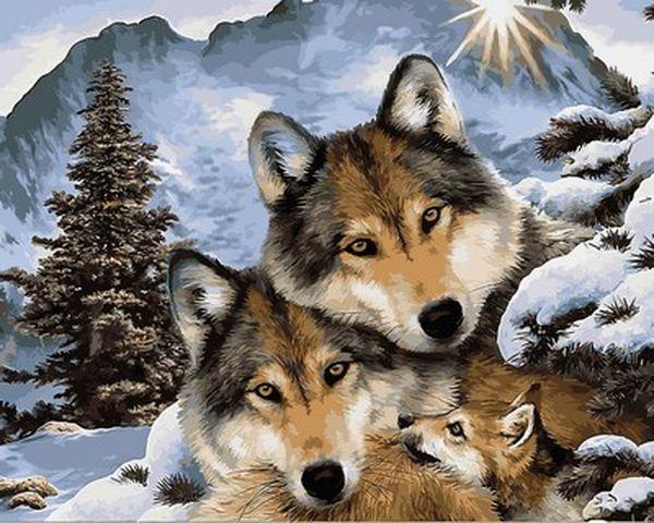 Картины по номерам 40×50 см. Семья серых волков