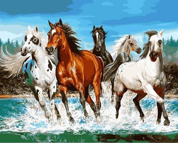 Картины по номерам 40×50 см. Бегущие лошади