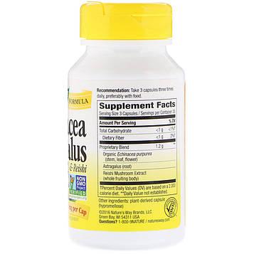 Natures Way, Эхинацея астрагал и рейши, 400 мг, 100 таблеток. Капсулы