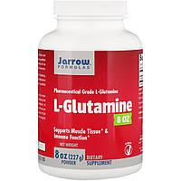 Jarrow Formulas, L-глютамин, 8 унций (227 г) порошка