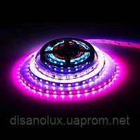 Светодиодная  Адресная Smart LED лента WS2811  5050 12V 60Led/m  5m RGB  черная подложка IP65, фото 3