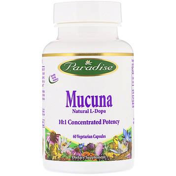 Paradise Herbs, Mucuna, 60 Vegetarian Capsules
