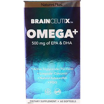 Natures Plus, Brainceutix, омега+, 500 мг, 60 мягких таблеток