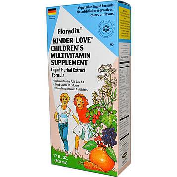 Flora, Floradix, Средство, которое любят дети, Мультивитаминная добавка для детей, 17 жидких унций (500 мл)