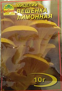 Мицелий гриба Вешенка лимонная, 10г