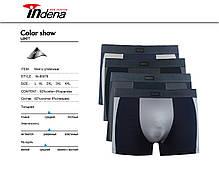 Мужские стрейчевые боксеры «INDENA»  АРТ.85078, фото 2