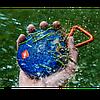 Портативная акустика JBL Clip 2 Оригинал. Teal. Бирюза, фото 6