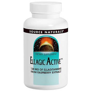 Source Naturals, Активные Эллаготанины, 300 мг, 60 таблеток