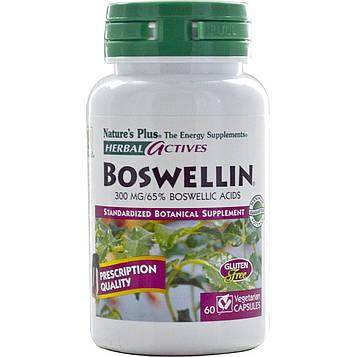 Natures Plus, «Травяные активные вещества», босвелин, 300 мг, 60 растительных капсул