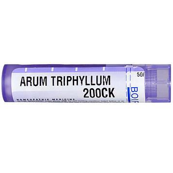 Boiron, Single Remedies, Арум трифиллум, 200CK, прибл. 80 гранул