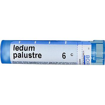 Boiron, Single Remedies, Багульник болотный (Ledum Palustre), 6C, приблизительно 80 гранул