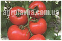 Семена Томата ДИАГРАММА F1  500 семян Nunhems