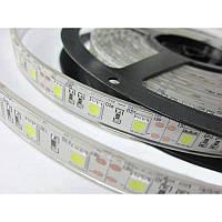 Dilux - Светодиодная лента SMD 5054 60LED/m IP67, фото 1