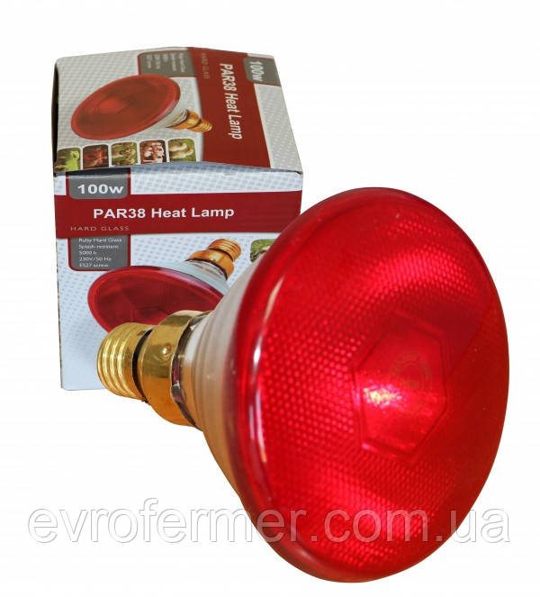 Лампа для обогрева поросят PAR38 175W