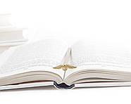 Закладка для книг Золотой Снитч, фото 2
