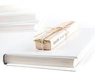 Закладка для книг Золотой Снитч, фото 3