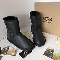 Высокие женские угги UGG Australia  (реплика)