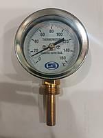 "Термометр вертикальный Gross 1/2"" 60мм L50мм (0-160С)"