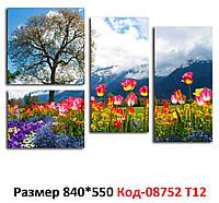 Модульна картина Гірські тюльпани 840*550 мм. Код-08752 Т-12