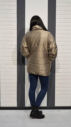 Бежево-золотистая куртка Alberto Bini 6005 40 размер, фото 2