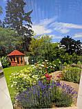 """Обігрівач-картина плівковий на стіну """"Лаванда, квіти, сад"""", карбоновий обігрівач-панно, фото 3"""