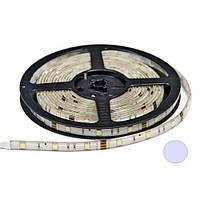Светодиодная лента 5м B-LED 5050-30 IP65 герметичная