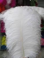 Перо страуса, Цвет белый, размер 40-45cм*1шт.