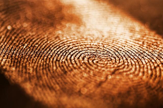 Отпечатки пальцев — ключ к будущему