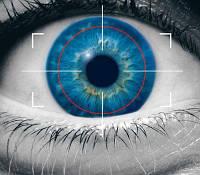 Биометрические системы безопасности