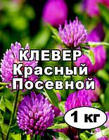Семена Клевер красный, пакет 1 кг