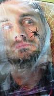Паутина белая  с 2  паучками