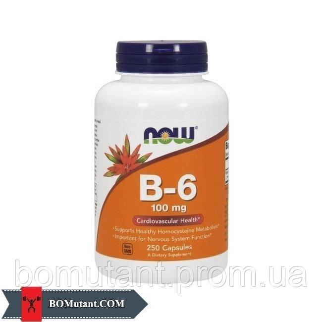 B-6 100 mg 250капсулы NOW шоколад-кокос