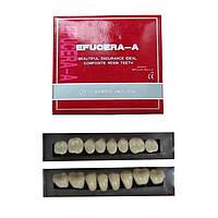 Набор зубов, верх+низ=28  зубов, Efucera-A