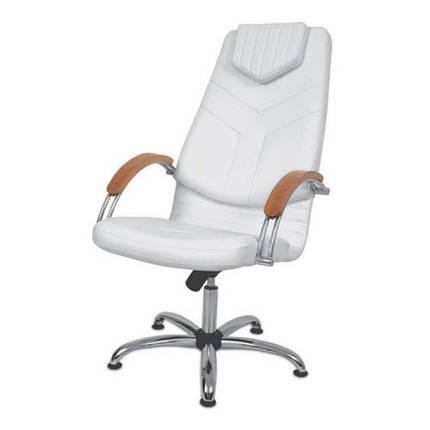 Кресло педикюрное DINO I (Panda ТМ), фото 2