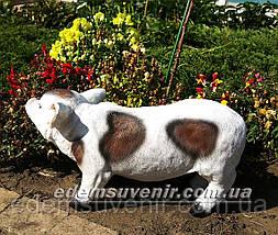 Садовая фигура Кабанчик пятнистый, фото 3